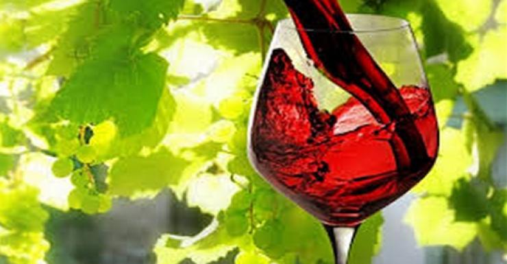 ¡1 vaso de vino tinto equivale a una hora de ejercicio!